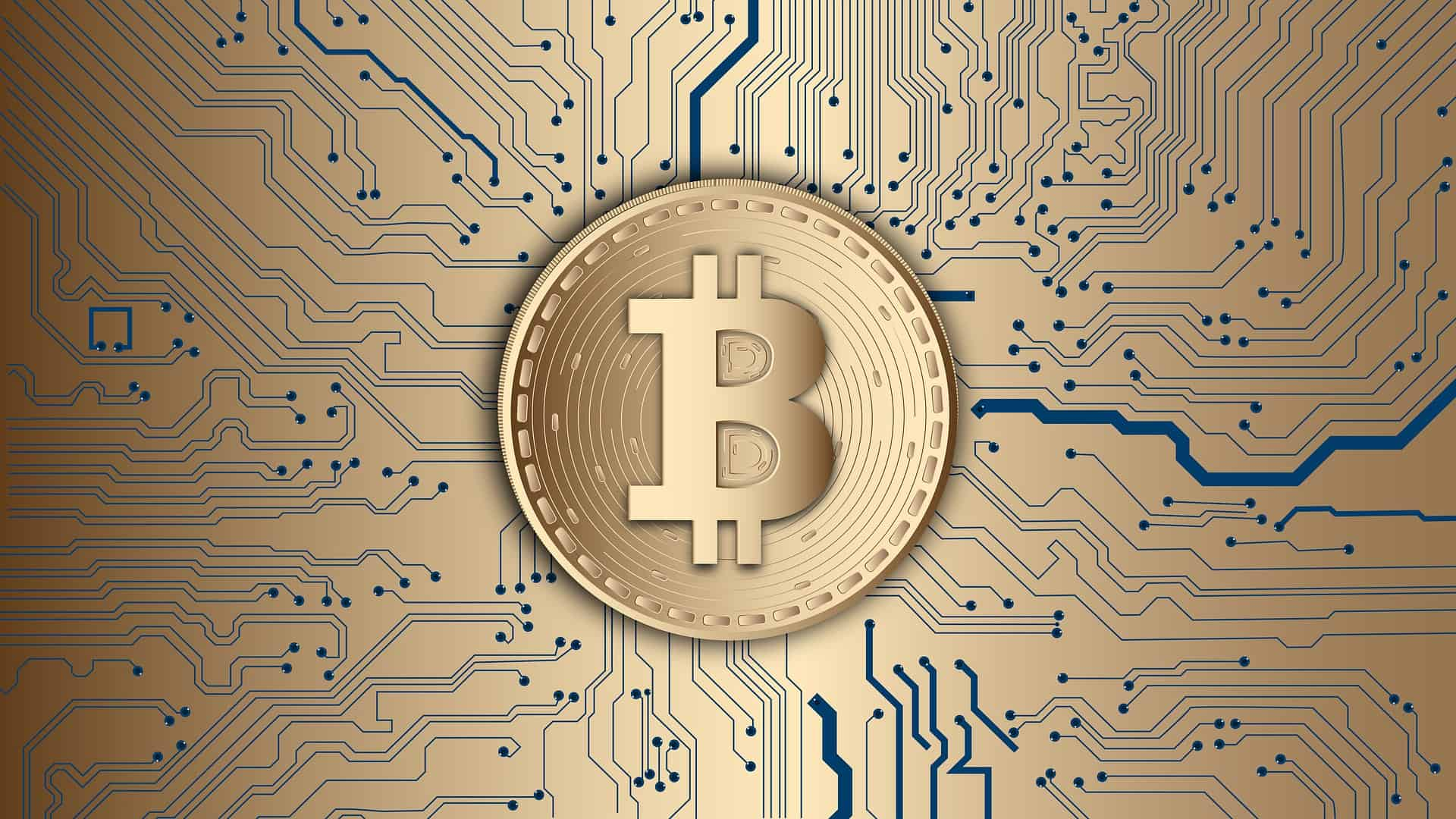 Should I invest in Bitcoin?